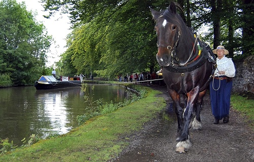 Svetlana Roberts' second placed entry in the 2010 Marple Festival Photo Competition